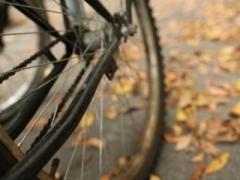 Budapest by bike