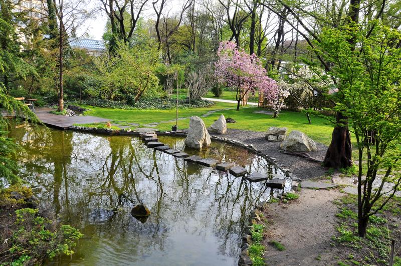 Botanical garden in Budapest